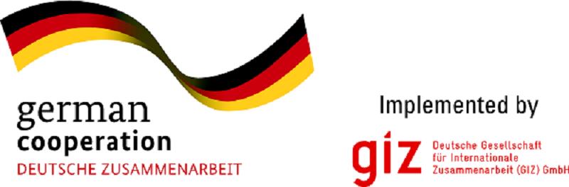 L'Agence Allemande de coopération technique (GIZ) et financière (KfW)